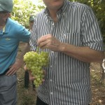 Minister Ortega visiting a vineyard in the Arava